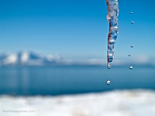 Bilde av vann som drypper fra smeltende istapper - Solrik vinterdag i Nord Norge