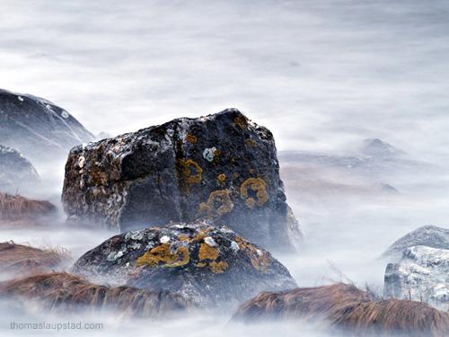 Bilde av steiner dekket av lav ved høyvann - 20 sekunder lang eksponering