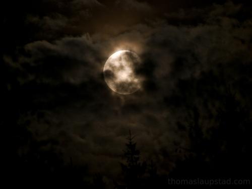 Bilde av månen og skinnende skyer over tretopper