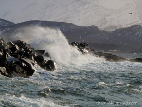 Bilder av svære bølger som slår inn over molo i Nord Norge