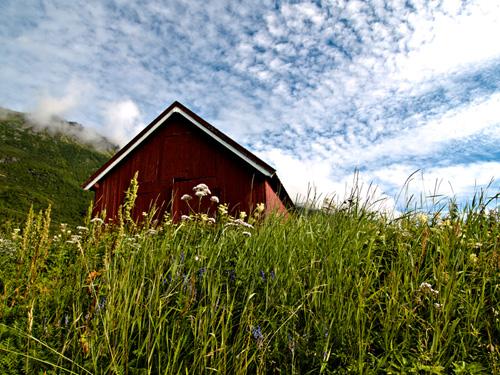 Bilde av nord-norsk naust i sommereng
