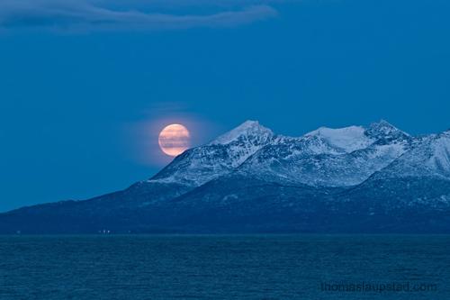 Bilde av rødlig måne over Senja - Mørketid i nord